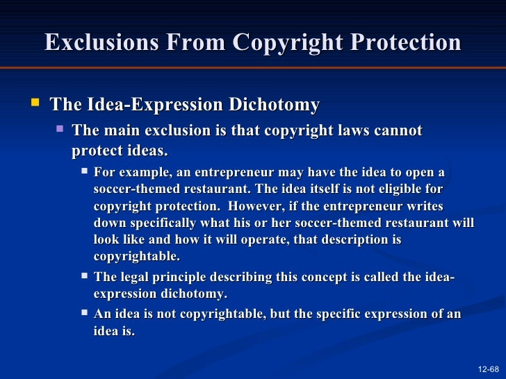 Idea–expression divide