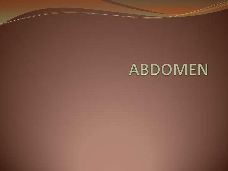 ABDOMEN<br />