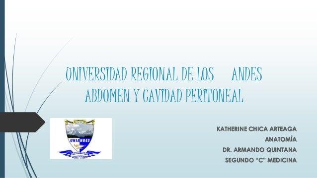 UNIVERSIDAD REGIONAL DE LOS ANDES ABDOMEN Y CAVIDAD PERITONEAL KATHERINE CHICA ARTEAGA ANATOMÍA DR. ARMANDO QUINTANA SEGUN...