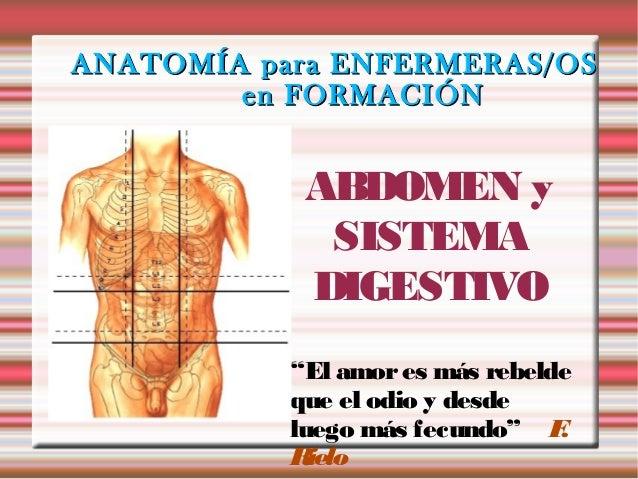 """ANATOMÍA para ENFERMERAS/OS        en FORMACIÓN            ABDOMEN y             SISTEMA            DIGESTIVO           """"E..."""