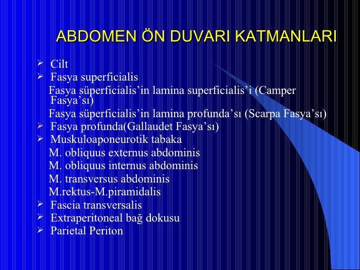 ABDOMEN ÖN DUVARI KATMANLARI <ul><li>Cilt </li></ul><ul><li>Fasya superficialis </li></ul><ul><li>Fasya süperficialis'in l...