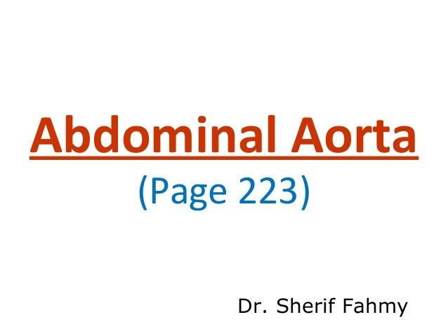 Abdominal Aorta (Anatomy of the Abdomen)