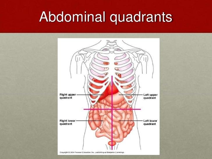 Abdominal emergencies 2 14 abdominal ccuart Images