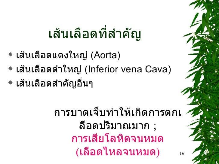เส้นเลือดที่สำคัญ <ul><li>เส้นเลือดแดงใหญ่  (Aorta) </li></ul><ul><li>เส้นเลือดดำใหญ่  (Inferior vena Cava) </li></ul><ul>...
