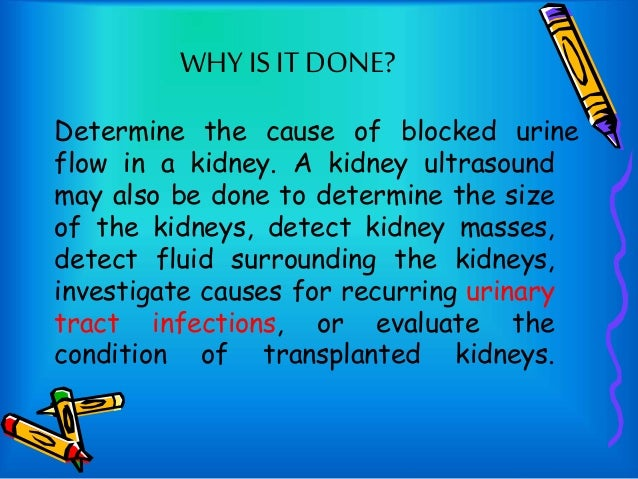 kidney ultrasound preparation