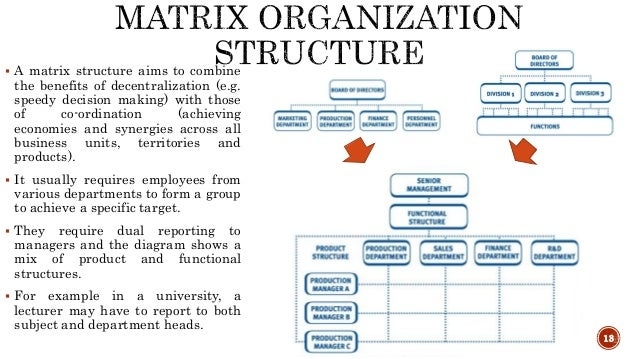 Organizational And Production Structure Of A Firm