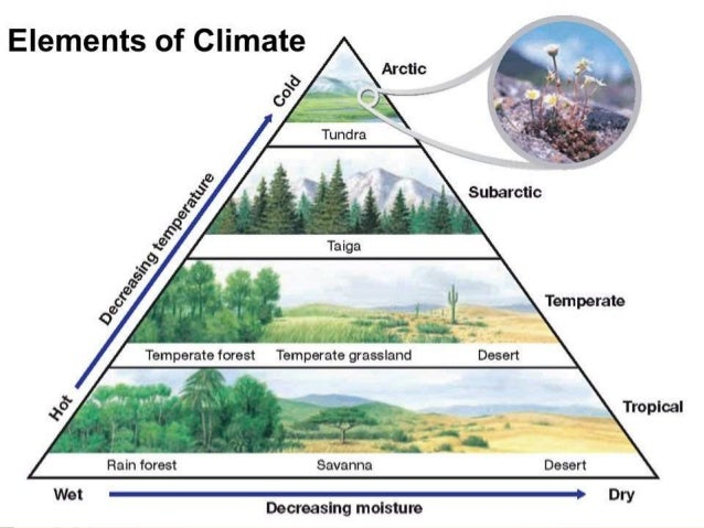 elements of weather and climate Earth is the only planet in the solar system with an atmosphere that can sustain life earth is the only planet in the solar system with climate and weather.