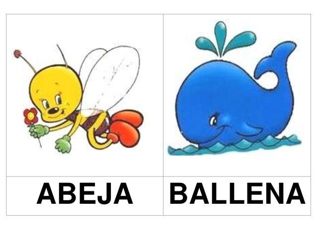 ABEJA BALLENA