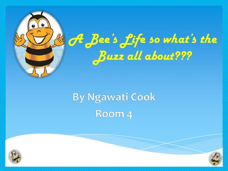 A Bee's Life so what's the   Buzz all about???