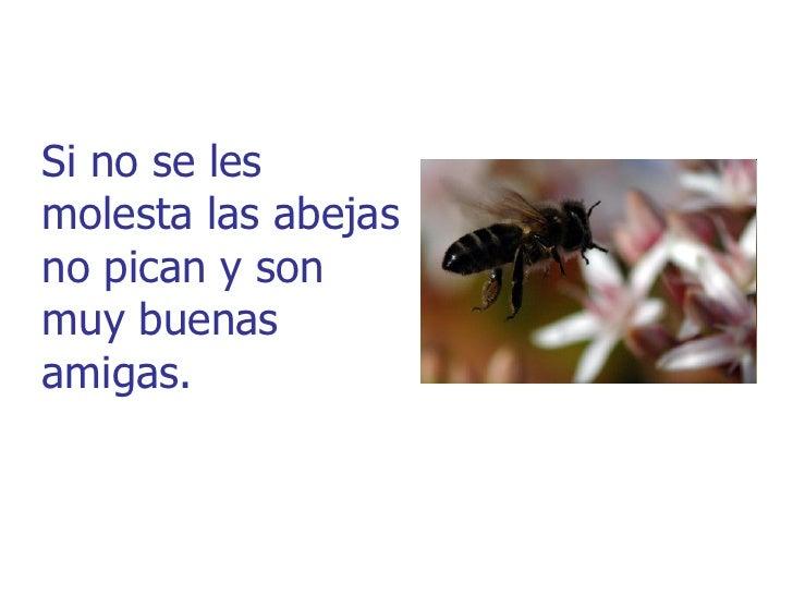 ¡La miel es unalimento naturalque nos ayuda acrecer sanos yfuertes!.