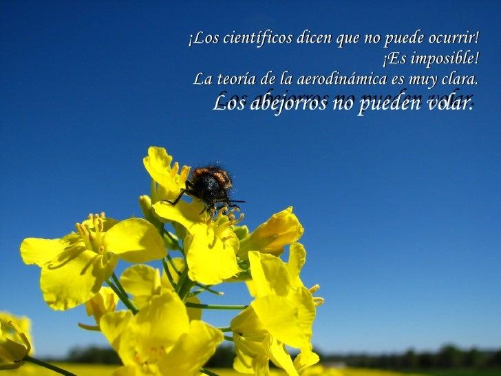 ¡Los científicos dicen que no puede ocurrir! ¡Es imposible! La teoría de la aerodinámica es muy clara. Los abejorros no pu...