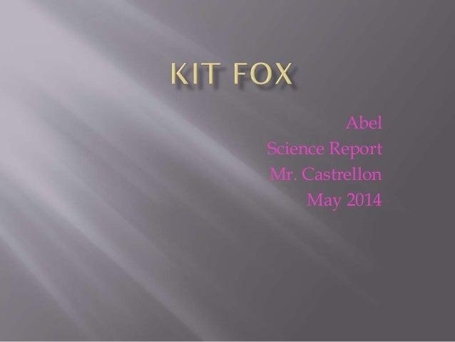 Abel Science Report Mr. Castrellon May 2014