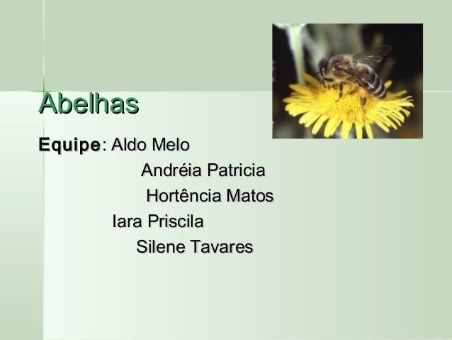 AbelhasAbelhas EquipeEquipe: Aldo Melo: Aldo Melo Andréia PatriciaAndréia Patricia Hortência MatosHortência Matos Iara Pri...