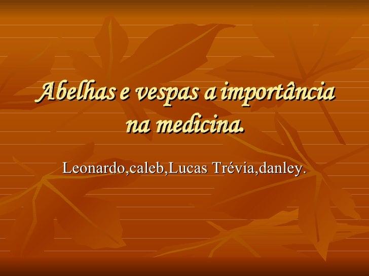 Abelhas e vespas a importância na medicina . Leonardo,caleb,Lucas Trévia,danley.