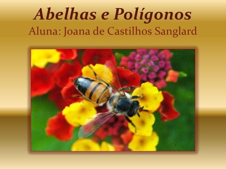 Abelhas e PolígonosAluna: Joana de Castilhos Sanglard<br />