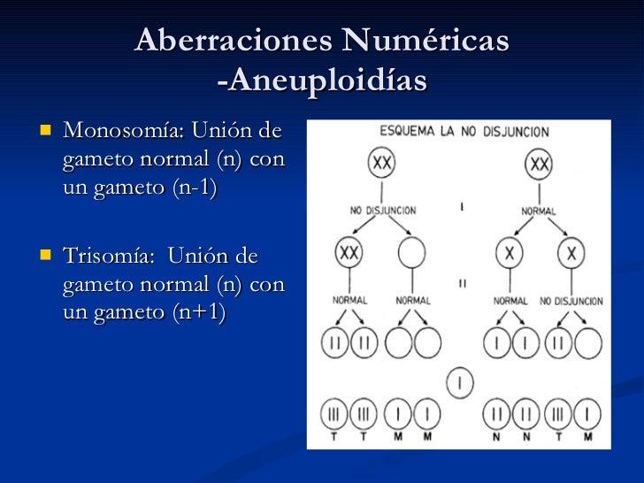 alteraciones cromosomicas estructurales yahoo dating