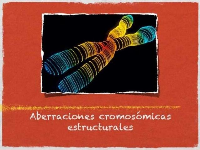 ABERRACIONES CROMOSOMICAS En un error durante la meiosis de los gametos o de las primeras divisiones del huevo y que provo...