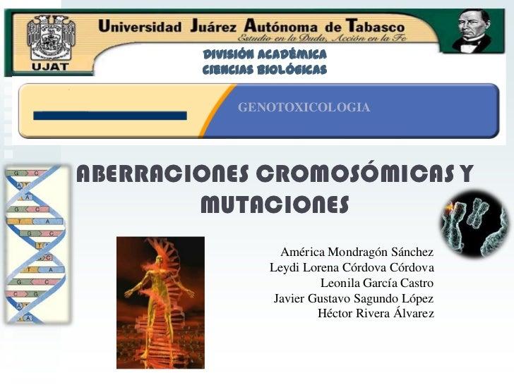 División Académica <br />Ciencias Biológicas<br />GENOTOXICOLOGIA <br />ABERRACIONES CROMOSÓMICAS Y MUTACIONES<br />Améric...