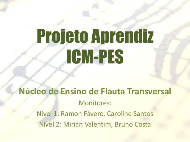 Projeto Aprendiz ICM-PES Núcleo de Ensino de Flauta Transversal Monitores: Nível 1: Ramon Fávero, Caroline Santos Nível 2:...