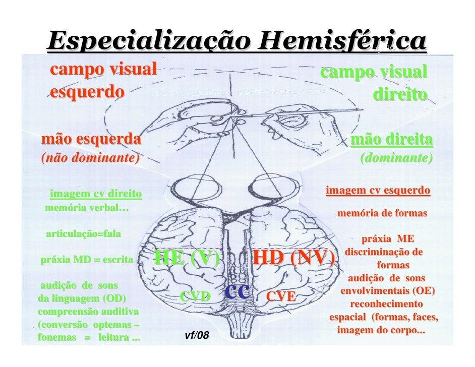 Especialização Hemisférica                              vf/99    campo visual                                campo visual ...