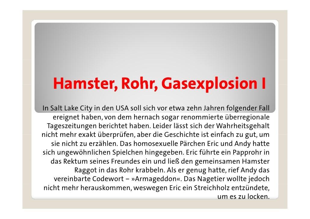 hamster rohr