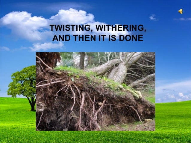 essay of the poem on killing a tree by gieve patel Reading is associated with books, but reading is also reading about life this blog is dedicated to all kinds of reading that the book of life offersand compels us all to think, analyse.