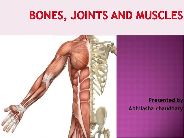 when you move your bones, joints, and muscles work together; this is called?