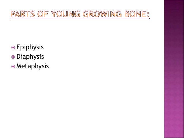 AXIAL SKELTON  Cranial Bones(8)  Parietal (2)  Temporal (2)  Frontal (1)  Occipital (1)  Ethmoid (1)  Sphenoid (1)