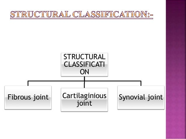 Syndesmosis:-  The bones are connected by the interosseous ligament. E.g.inferior tibiofibularjoint.