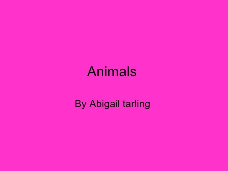 Animals  By Abigail tarling