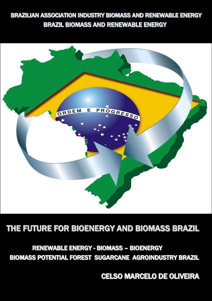 BRAZILIAN ASSOCIATION INDUSTRY BIOMASS AND RENEWABLE ENERGY          BRAZIL BIOMASS AND RENEWABLE ENERGYTHE FUTURE FOR BIO...