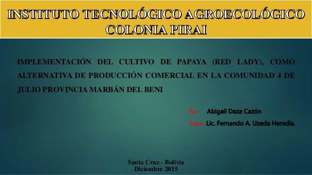 Santa Cruz - Bolivia Diciembre 2015 Por: Abigail Daza Cazón Tutor: Lic. Fernando A. Uzeda Heredia. IMPLEMENTACIÓN DEL CULT...