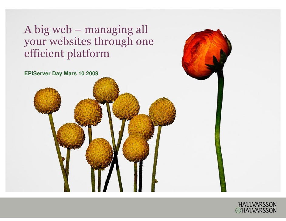 A big web – managing all your websites through one efficient platform EPiServer Day Mars 10 2009