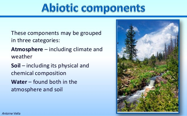 abiotic components of the environment
