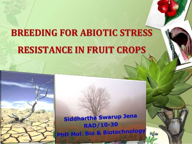 BREEDING FOR ABIOTIC STRESS  RESISTANCE IN FRUIT CROPS