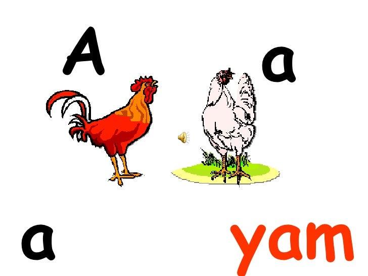 A   aa       yam