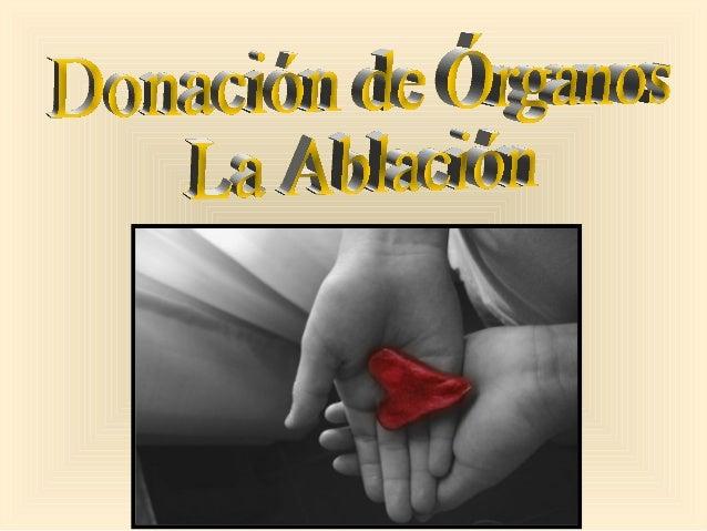 Para donar un órgano hay que pasar por muchas etapas, y una de ellas es la Ablación, que básicamente hablando en términos ...