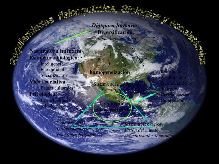 Regularidades  fisicoquímica, Biológica y ecosistémica <ul><li>Naturaleza humana </li></ul><ul><li>Estructura biológica : ...