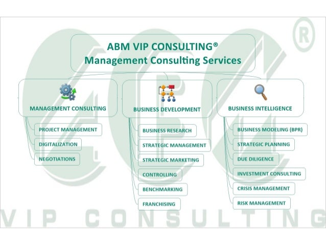ABM VIP Consulting® Management Consulting Services