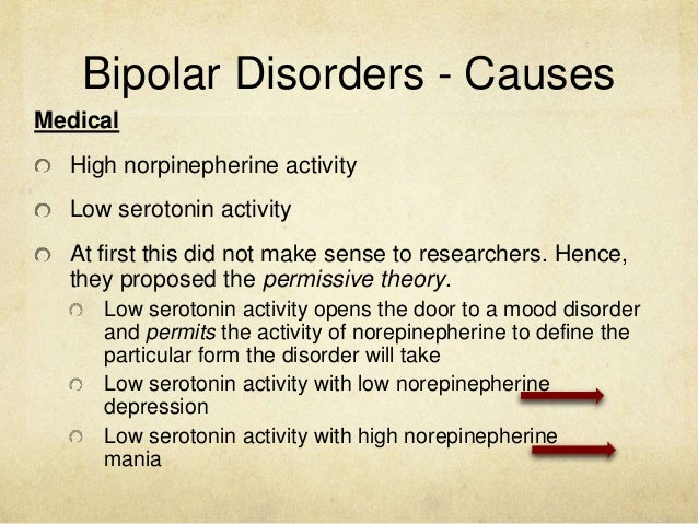 Term paper bipolar disorder