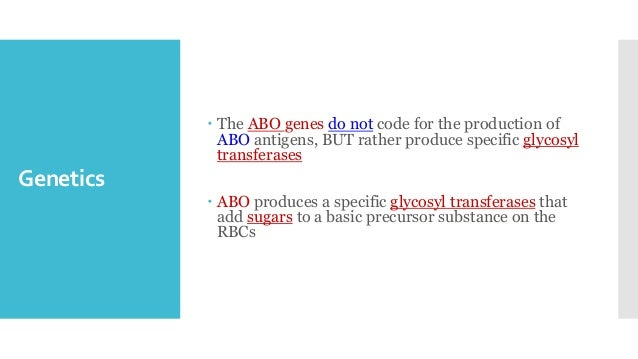 Genetics  The ABO genes do not code for the production of ABO antigens, BUT rather produce specific glycosyl transferases...