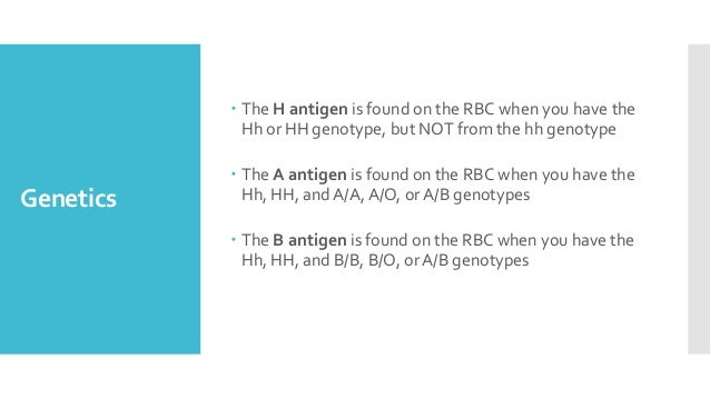Genetics  The H antigen is found on the RBC when you have the Hh or HH genotype, but NOT from the hh genotype  The A ant...