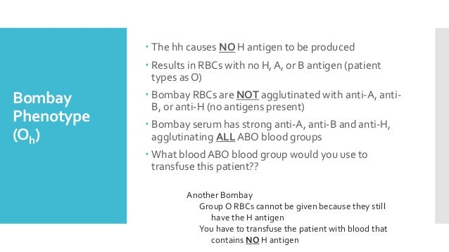 Bombay Phenotype (Oh)  The hh causes NO H antigen to be produced  Results in RBCs with no H, A, or B antigen (patient ty...