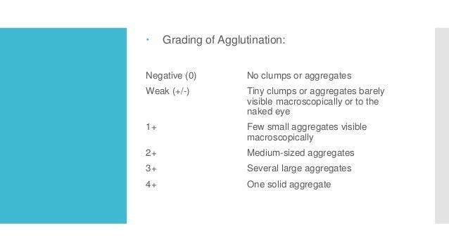  Grading of Agglutination: Negative (0) No clumps or aggregates Weak (+/-) Tiny clumps or aggregates barely visible macro...