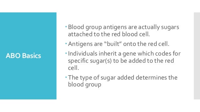 """ABO Basics Blood group antigens are actually sugars attached to the red blood cell. Antigens are """"built"""" onto the red ce..."""