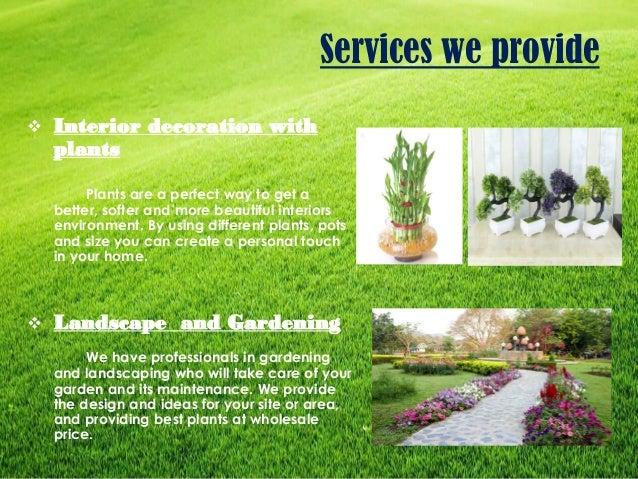 Buy plants online in new delhi your online nursery for Buy plans online