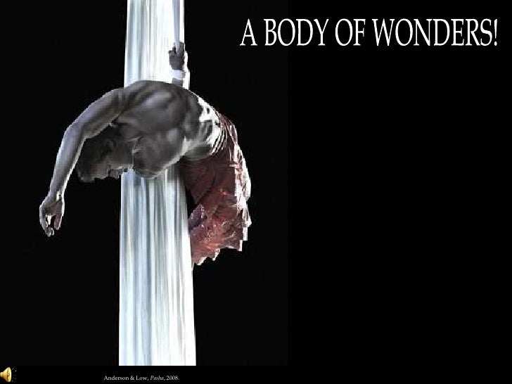 A BODY OF WONDERS!<br />Anderson & Low, Pasha, 2008.<br />