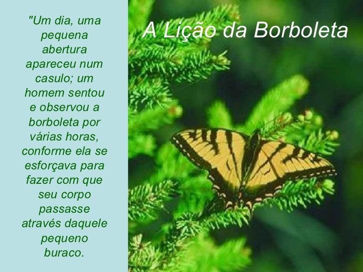 """""""Um dia, uma pequena abertura apareceu num casulo; um homem sentou e observou a borboleta por várias horas, conforme ..."""