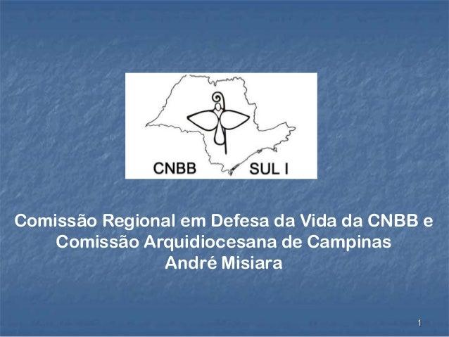 1 Comissão Regional em Defesa da Vida da CNBB e Comissão Arquidiocesana de Campinas André Misiara