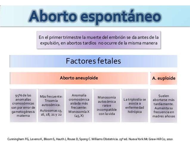 Aborto espontaneo - Aborto primer mes ...